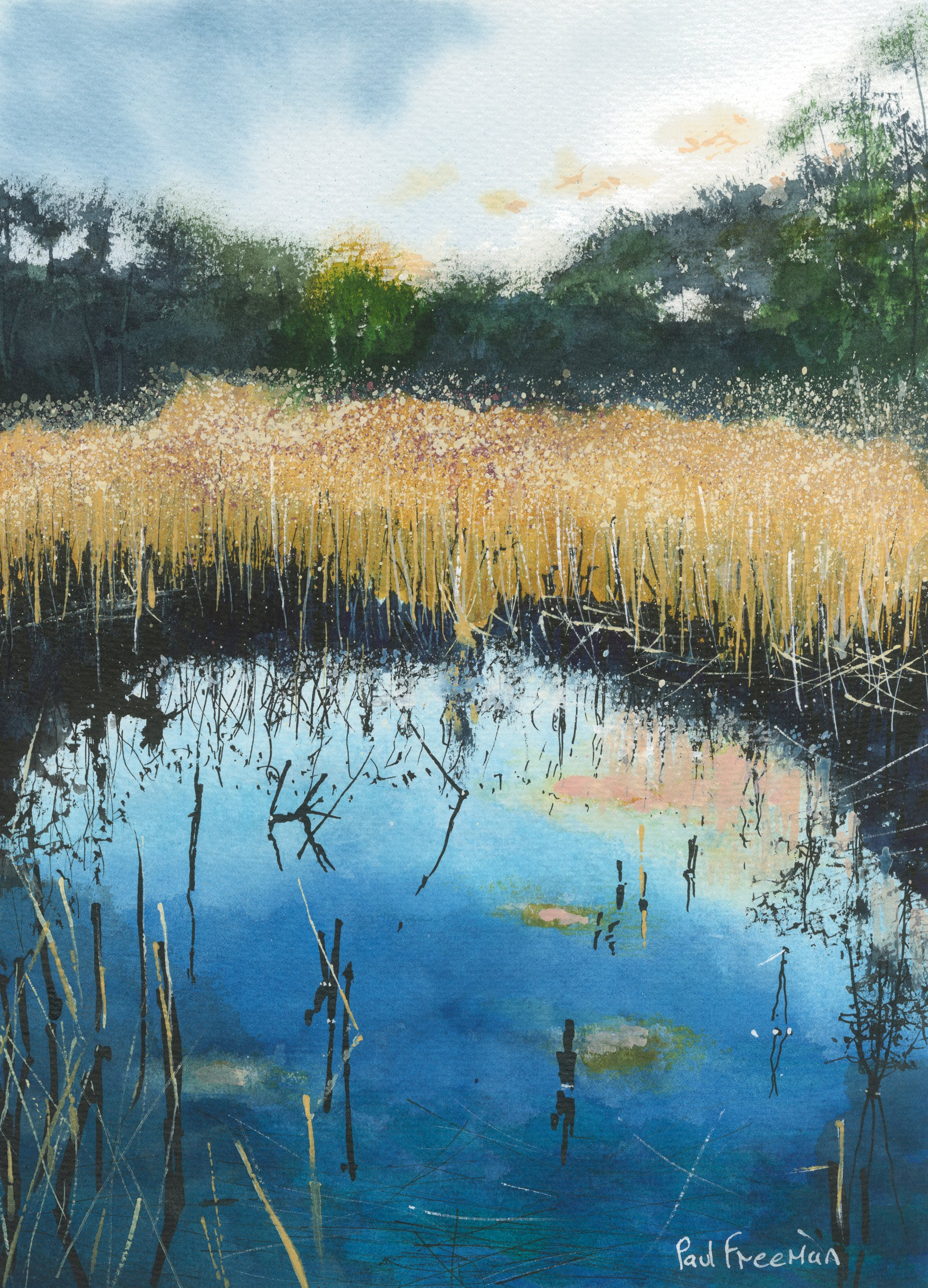 A little Known pond Original Landscape Art