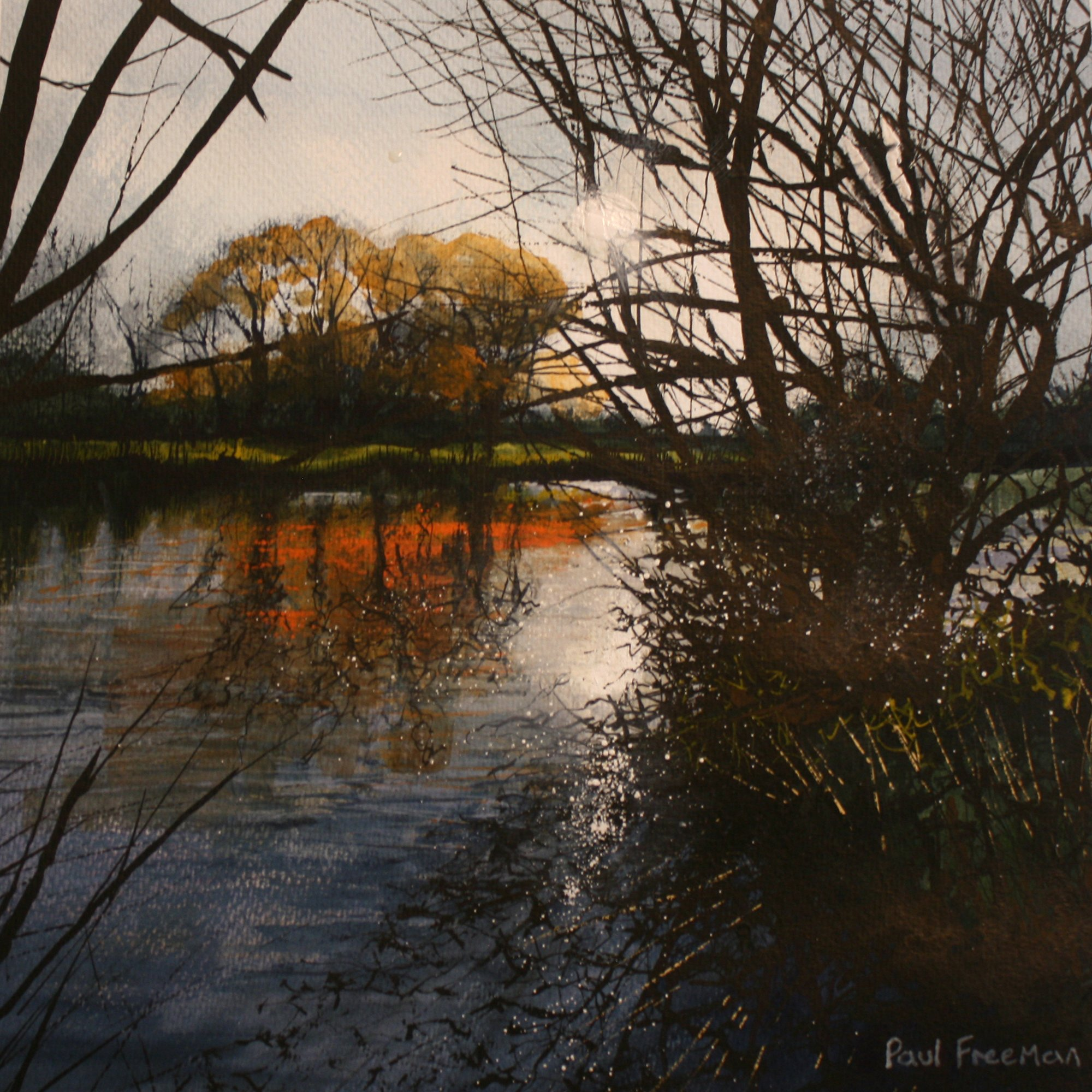 sunshine after the rain Original Landscape Art