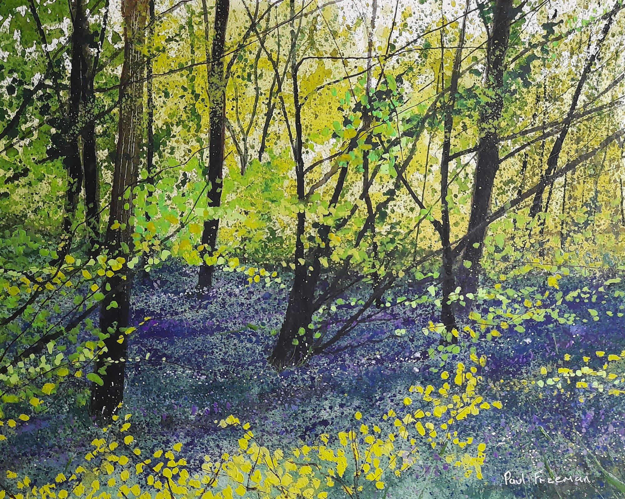 Beech saplings and bluebells Original Landscape Art
