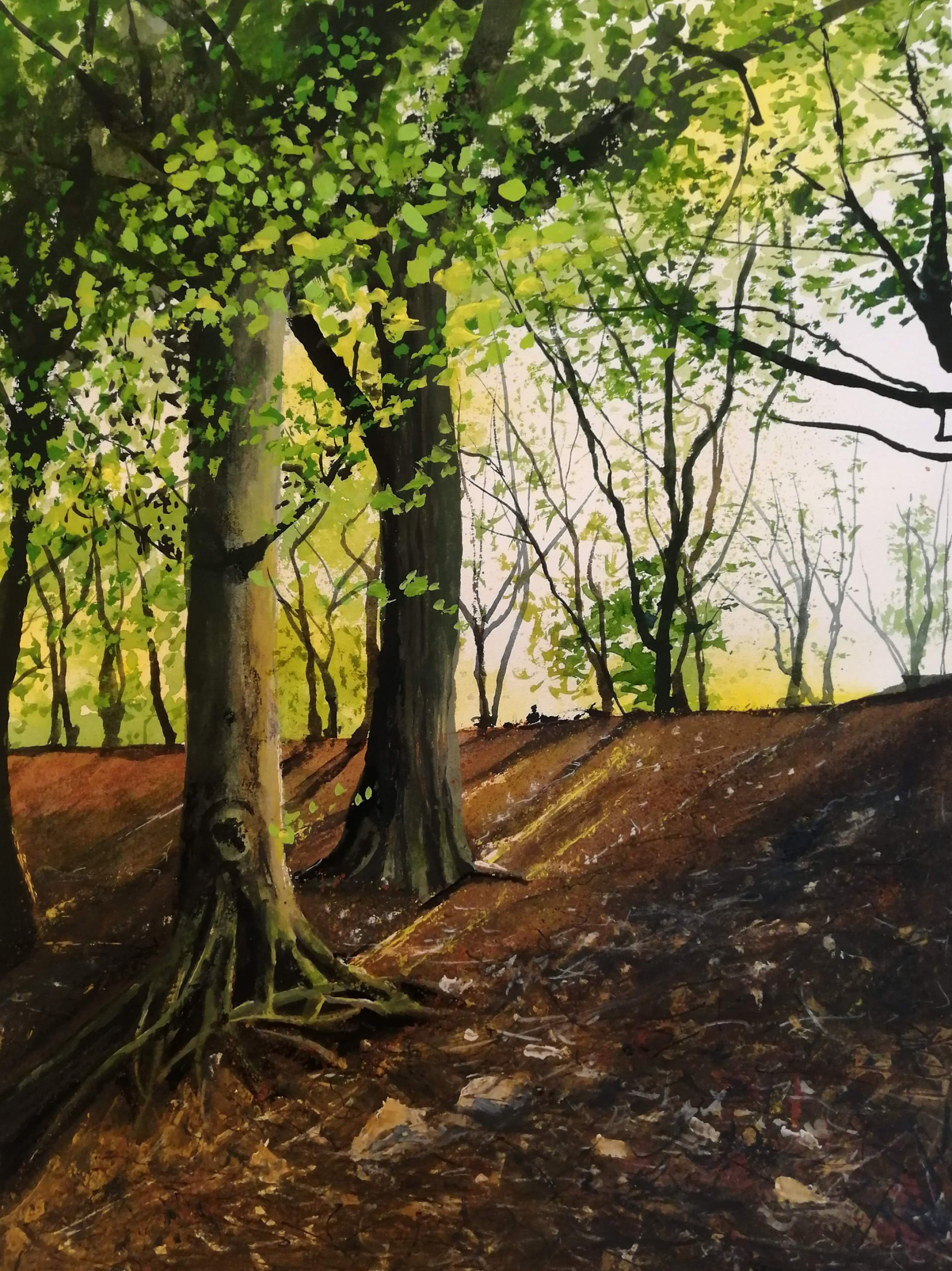Beechwood Original Landscape Art
