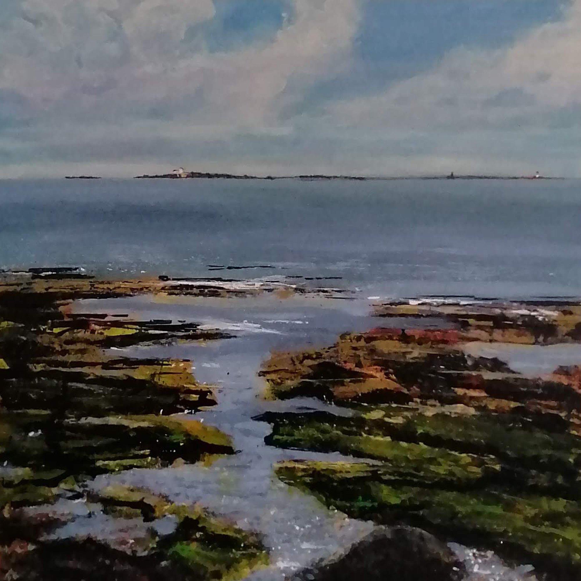 farne islands Original Landscape Art