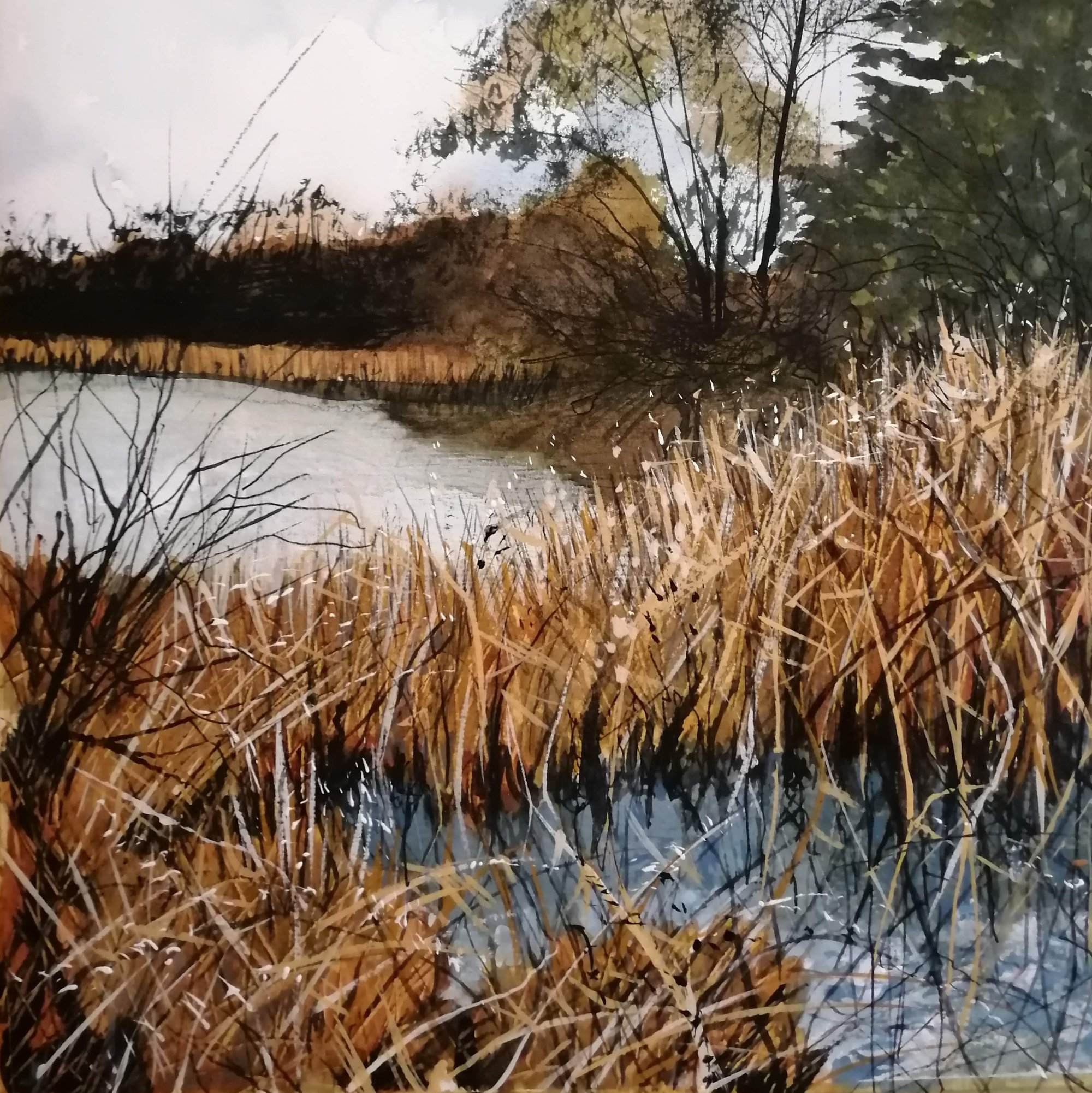 wind in a tangle of reeds Original Landscape Art